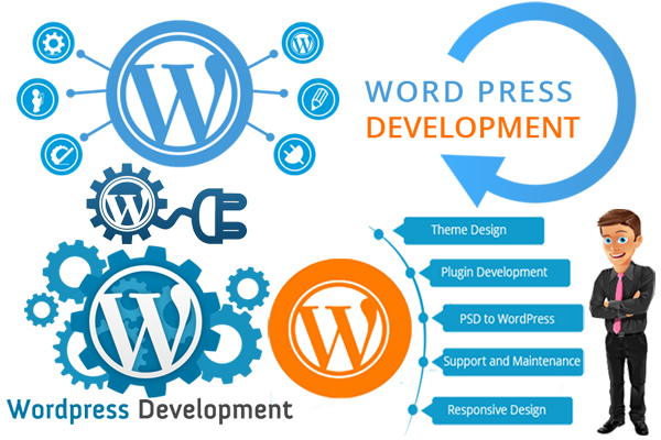 wordpress-development-pixxelznet