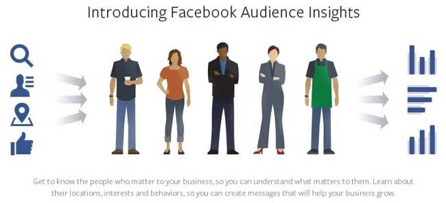 Facebook-Insights1